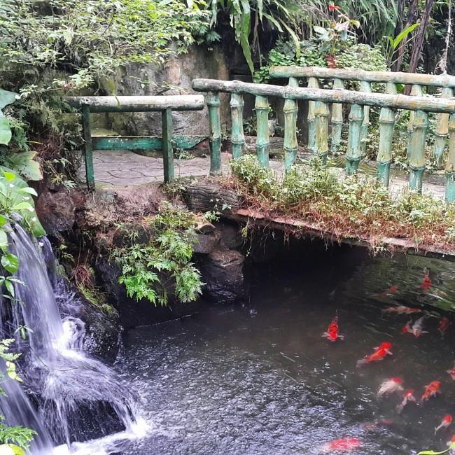 Kuala-lumpur-gezenti-anne-10
