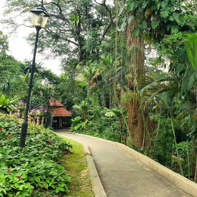 Kuala-lumpur-gezenti-anne-20