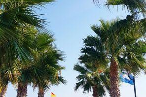 Çeşme'de, Denize Sıfır, 5 Yıldızlı, Konforlu Bir Otel, RADISSON BLU & SPA