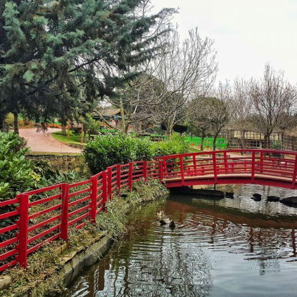 istanbulda_cocuklarla_hafta_sonu_gidilecek_yerler_botanik_park