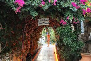 Datça Butik Otel Tavsiyesi, Yorumlar, Villa Aşina