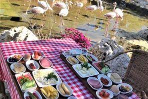 Çatalca'da Kahvaltı Nerede Yapılır? Flamingo Köy