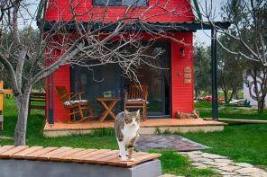 İzmir En İyi Bungalov Evler ve Fiyatları